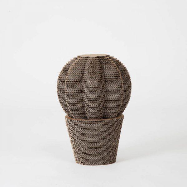cactus_cardboard_round